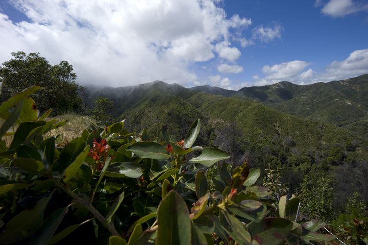 Clouds move into a valley in the Santa Lucia Mountains at Los Padres National Forest, Calif., Wednesday, May 18, 2011.