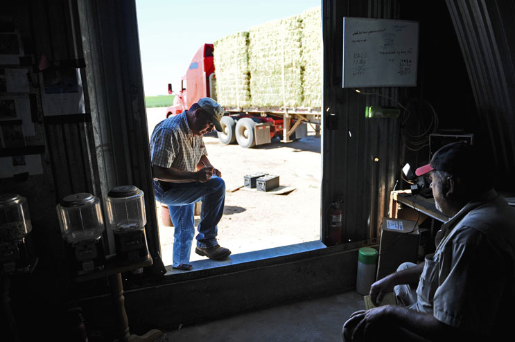 Larry Williams, left, a dairy farmer of Colorado Springs, pays David Dechant for a truck load of Alfalfa hay he picked up for his farm Thursday, June 16, 2011. Alfalfa hay yields high prices this year due to the draught in southern Colorado and New Mexico.