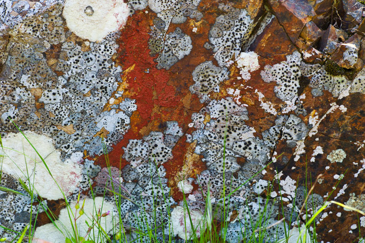 Lichen and two-colored rock work together to create the impression of an abstract painting on the Percorso del Monserrato hiking trail in Porto Azzurro, Wednesday, May 16, 2012.