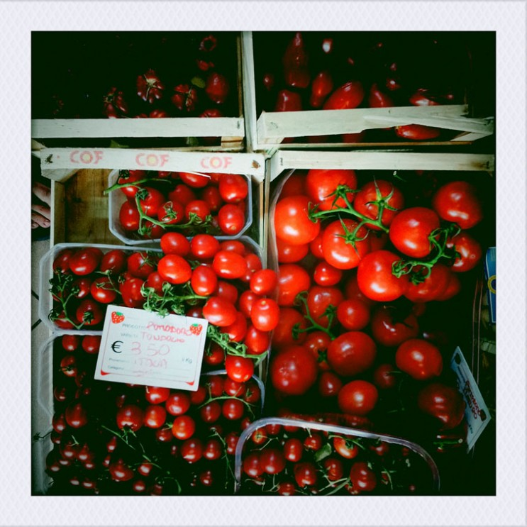 Tomatoes are on display at a grocery store on Via Roma in Capoliveri on the Tuscan Island of Elba, Italy, Monday, August 6, 2012.