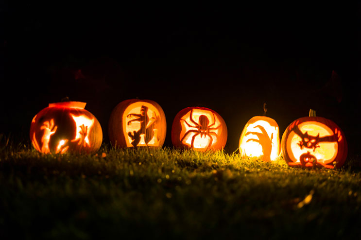 Jack O'Lanterns glow in our backyard in Abensberg, Bavaria. Wednesday, October 30, 2013.